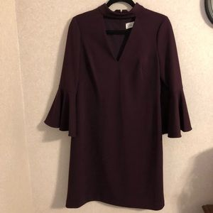 Eliza J Plum colored dress, with bell sleeves, 10